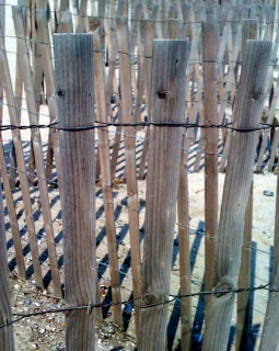 Dune Fencing in Fair Harbor - Could be sweater ribbing