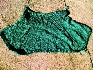 Mitered Tank Top to Waist on Fair Harbor Beach